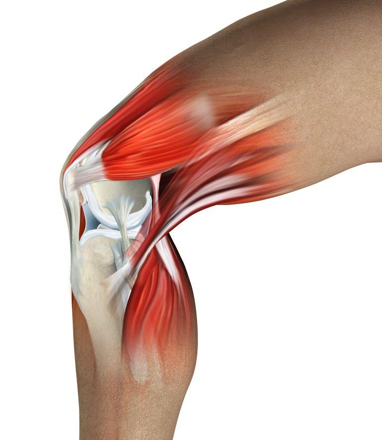 Cosa sta causando il tuo dolore al ginocchio?